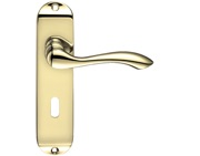 Zoo Hardware Project Range Arundel Door Handles On Backplate, Electro Brass - PR031EB (sold in pairs)